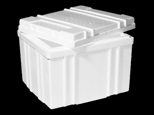 XIN Kina Box with Lid 33.5L
