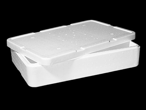 XIN Dairy Box with Lid 46.5L