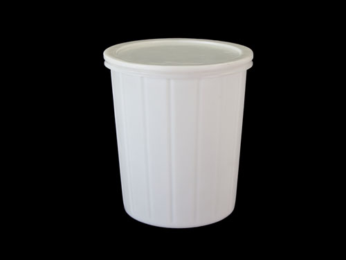 D45 Container 45L with Lid